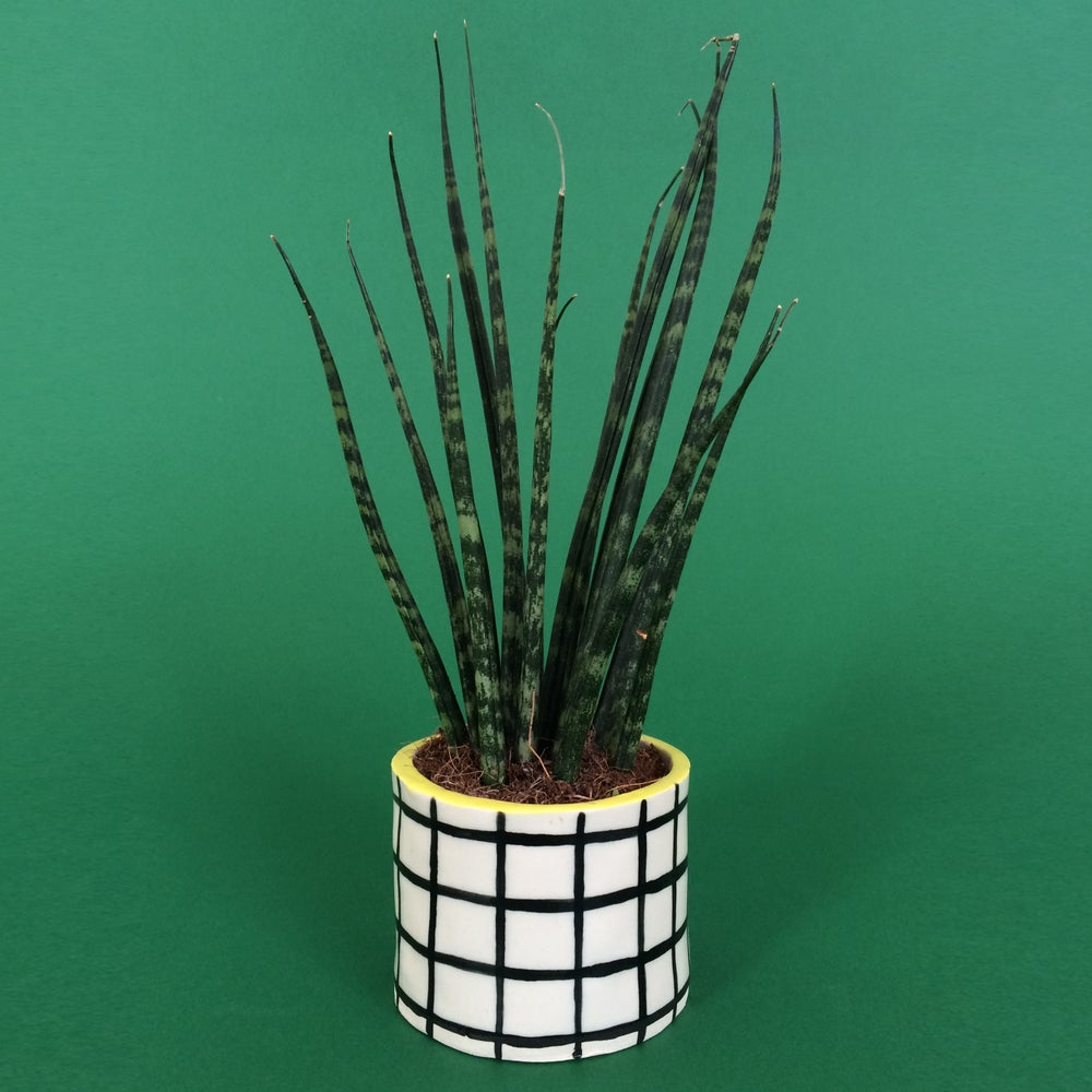 Image of Tiny Grid Pot
