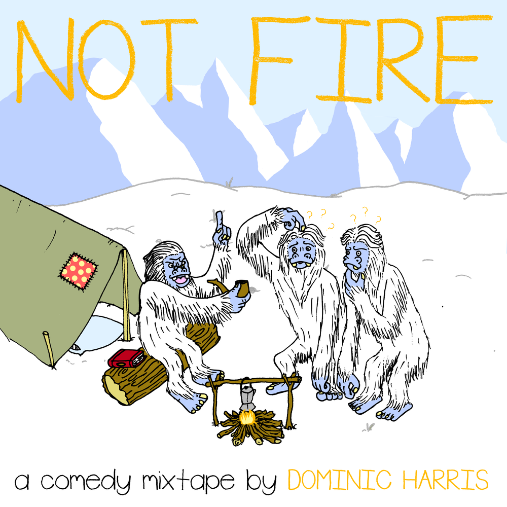 Image of NOT FIRE, THE MIXTAPE - DIGITAL DOWNLOAD