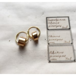 Image of The Golden Pipeliner Earring