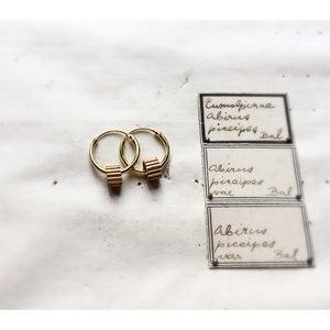 Image of The Golden Traveller Earring