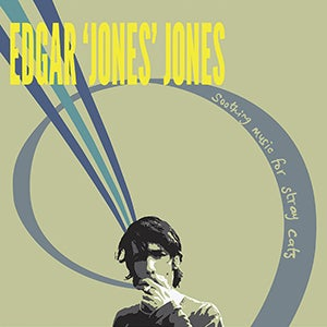 Image of EDGAR 'JONES' JONES - SOOTHING MUSIC FOR STRAY CATS - SIGNED ART PRINT
