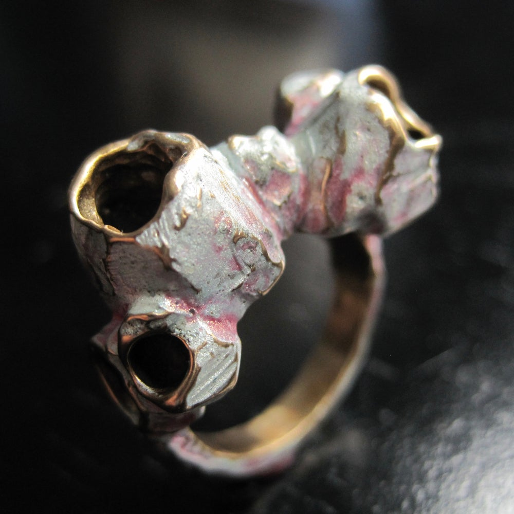 Image of Barnacle ring IV