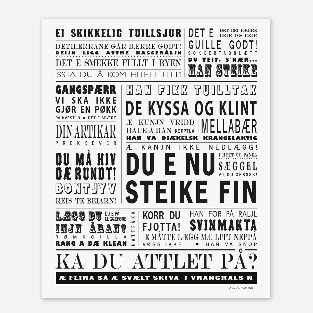 "Image of Bodø/Salten plakat ""Du e nu steike fin"""