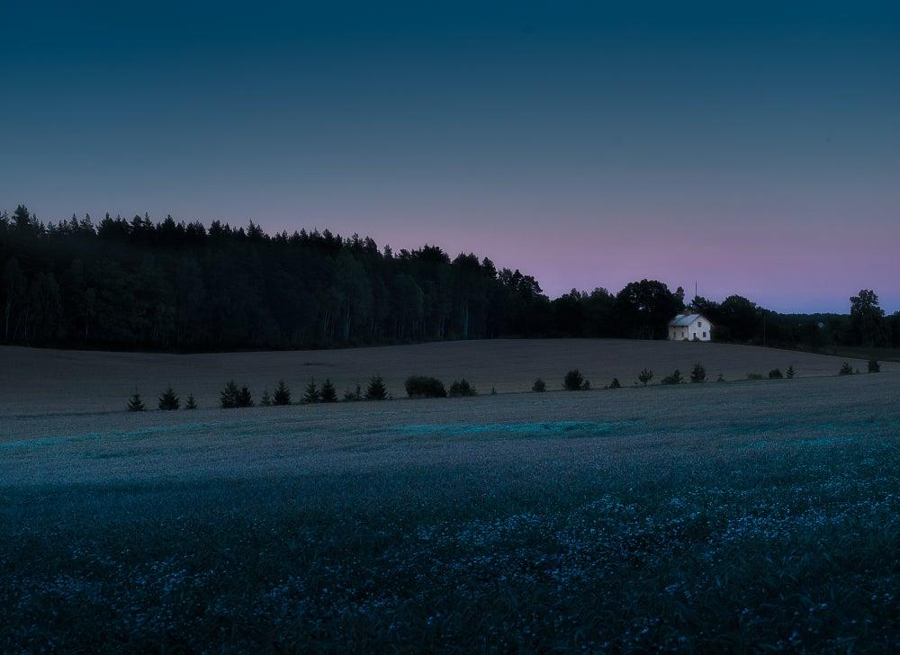 Image of Huset vid skogsbrynet