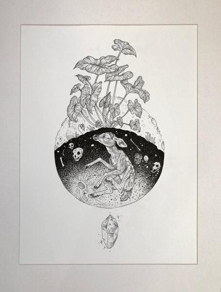 Image of Lunar Roots Original