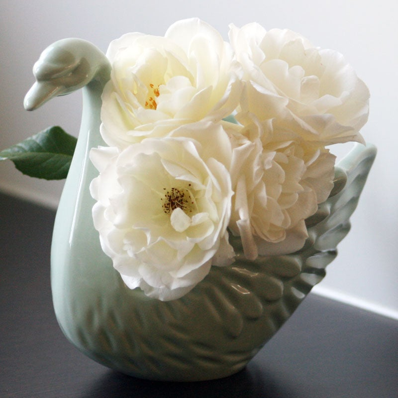 Image of Odette Swan Vase ~ Five Colours