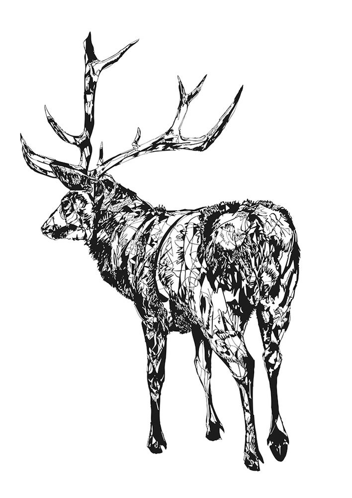 Image of Stag screen print