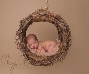 Image of PNW Uniquely Hand Crafted, Newborn Grape Vine Hammock/Dream Catcher