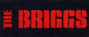 Image of The Briggs Logo Sticker
