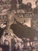 Image of AMYGDALA/ SALIGIA split 7""
