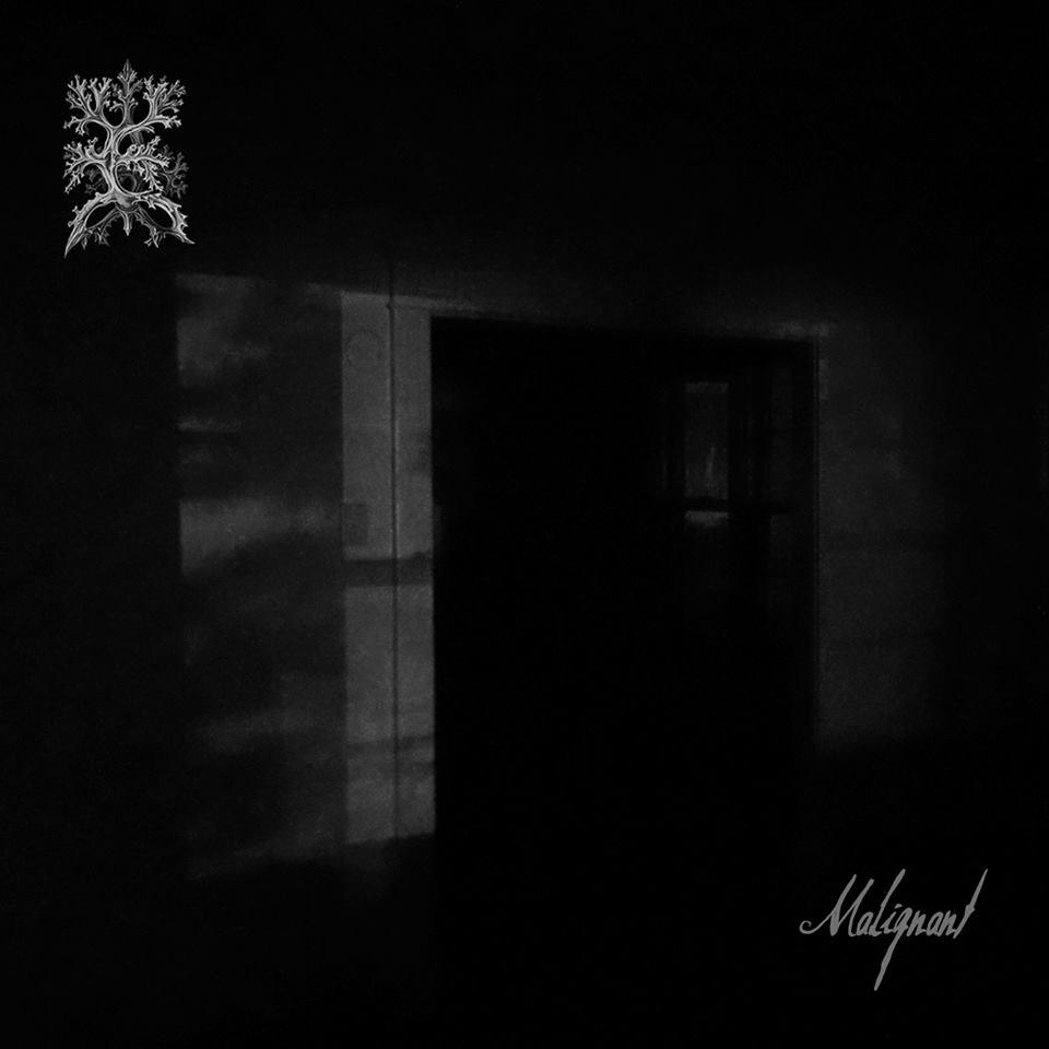 Image of EYF - Malignant