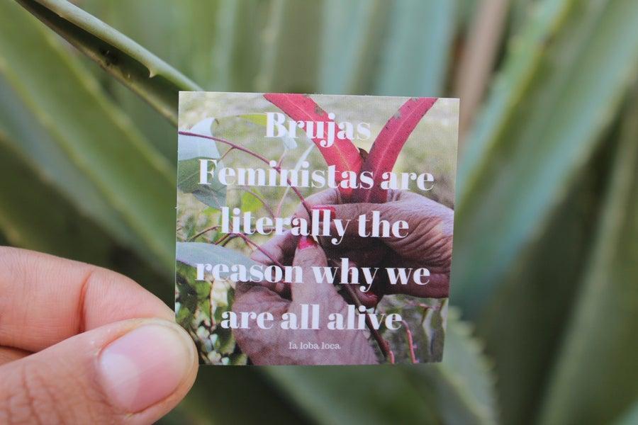 Image of Brujas Feministas Sticker