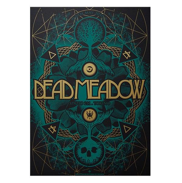 Image of DEAD MEADOW - Torino 2010