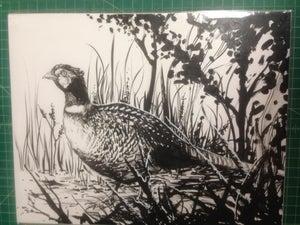 Image of pheasant inked original piece