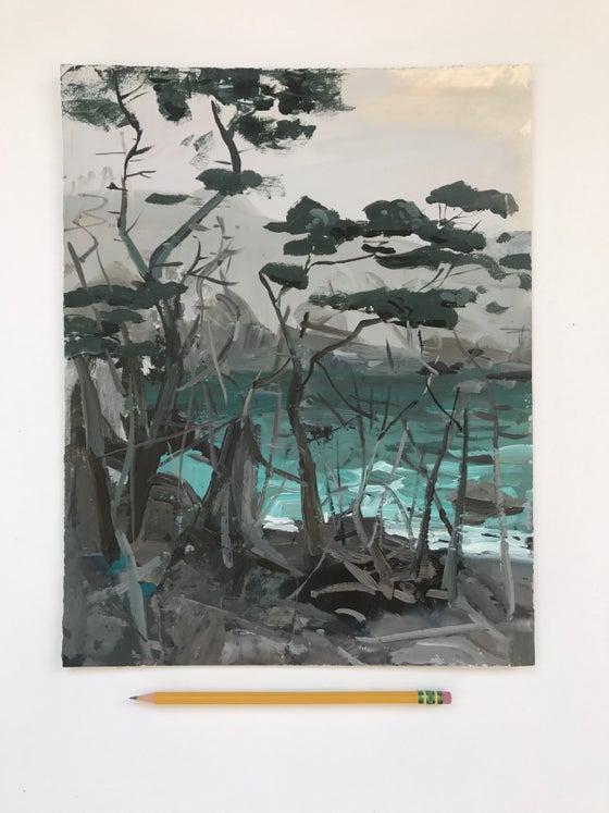 Image of Big Sur Cypress