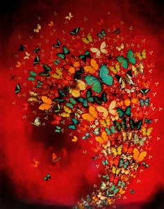 "Image of Lily Greenwood Giclée Print - Butterflies on Crimson - 11""x 14"" (Open Edition)"
