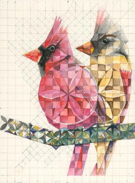 Image of Cardinals