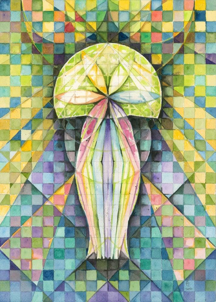 Image of Jellyfish
