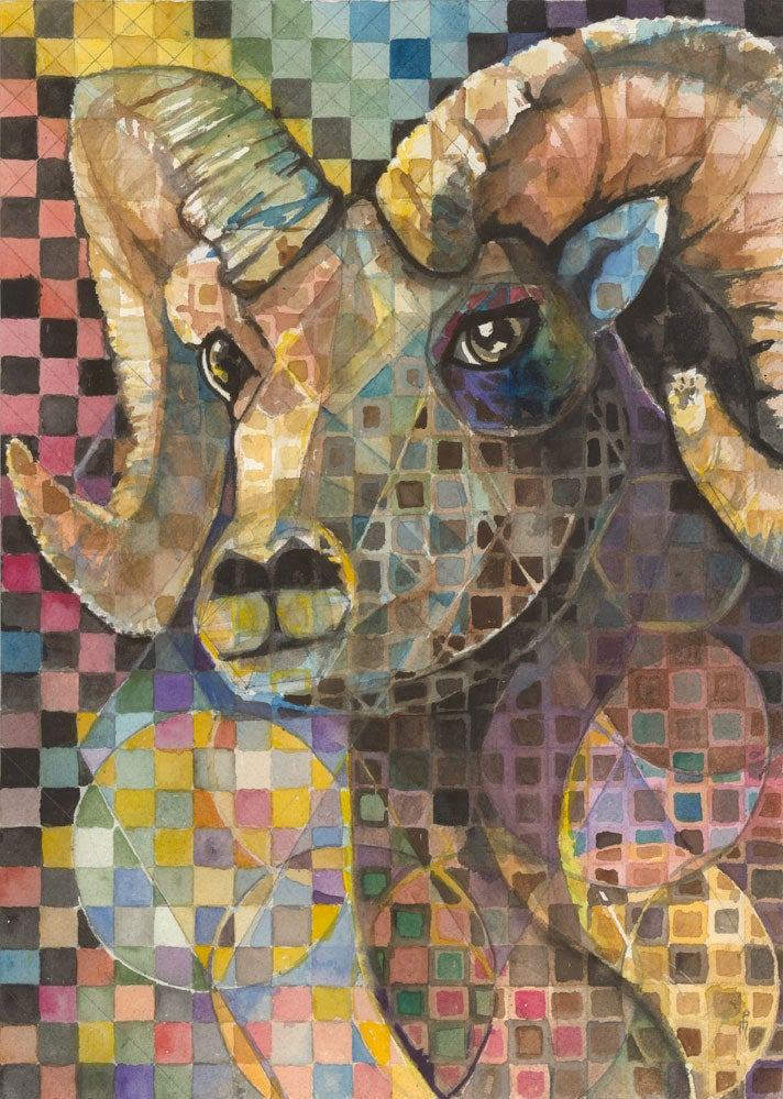 Image of Ram