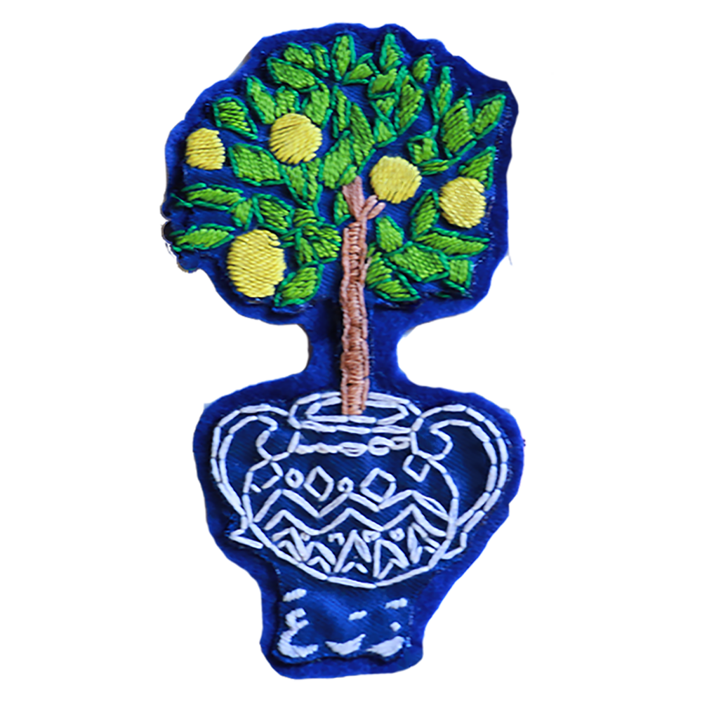 Image of Lemon Tree | شجرة الليمون