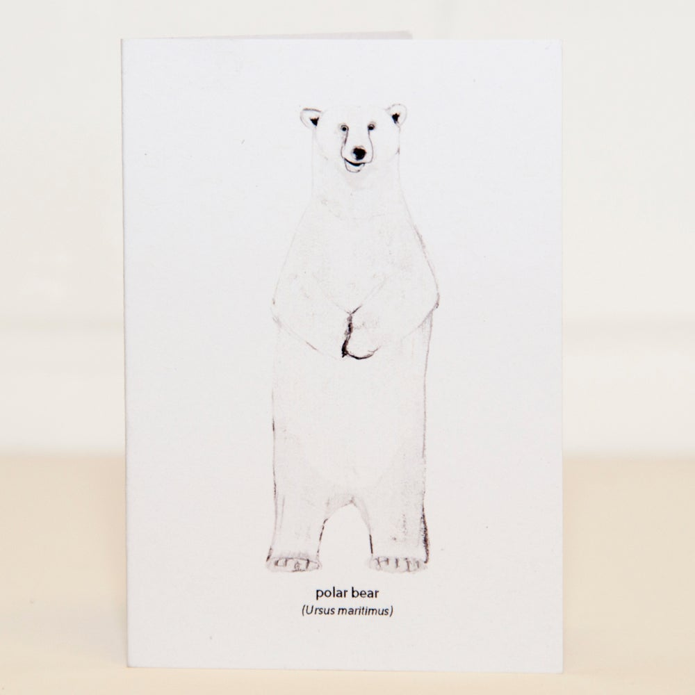 Image of Polar Bear Mini Card