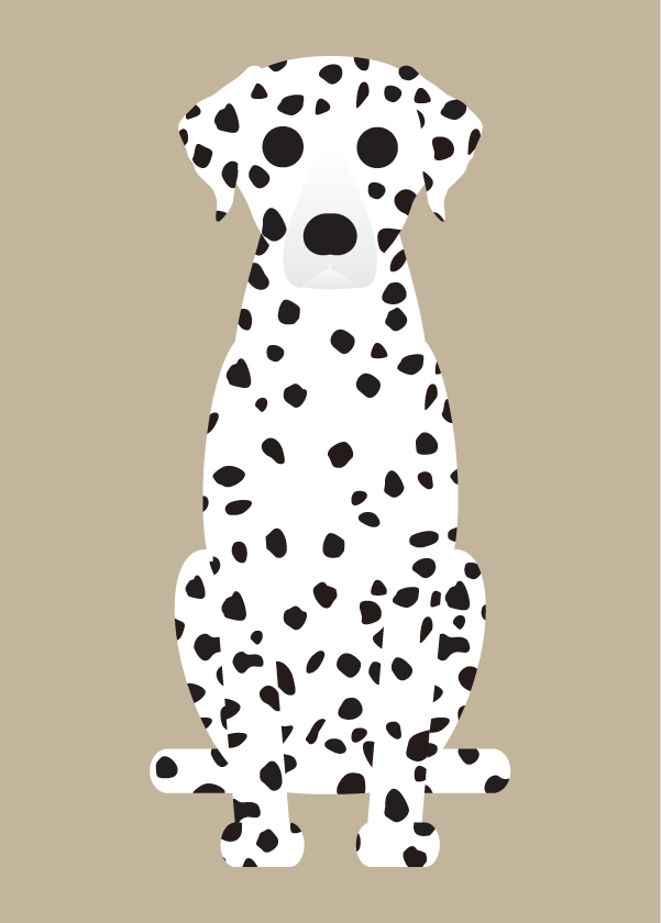 "Image of ""D"" DOG COLLECTION: Dalmation, Doberman, & Miniature Pinscher"