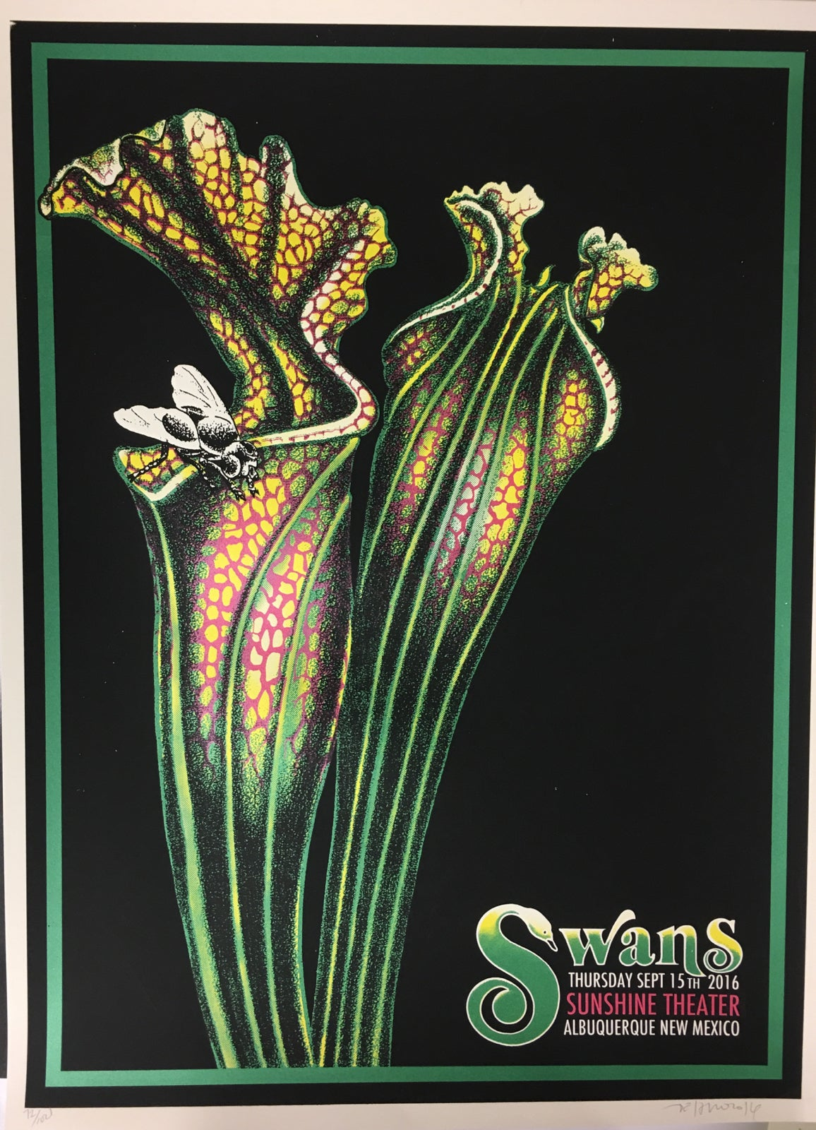 Image of Swans - 9/15/16 - Sunshine Theater - ABQ