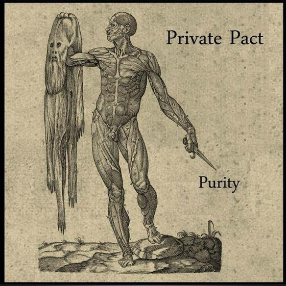 "Image of Private Pact ""Purity"" CD"