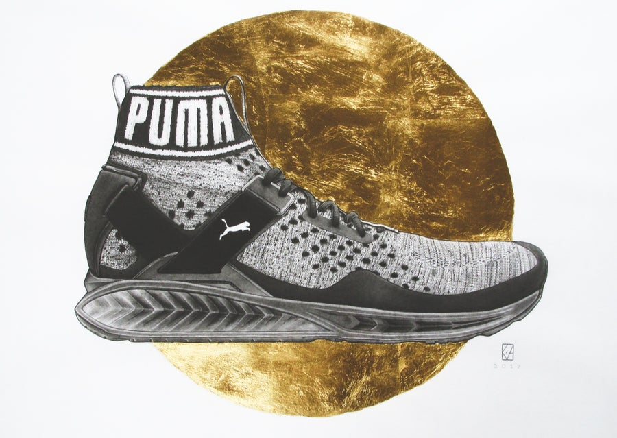 Image of PUMA - Ignite Evoknit - A1 (Framed)