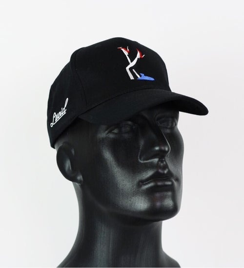 Image of 022-lucid pinup cap (black)