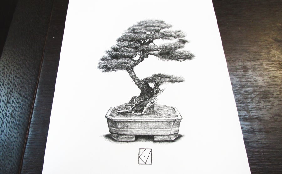 Image of Bonsai - A3 Print