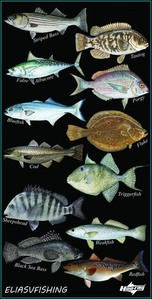 Image of Northeast Face Shield - All Your Favorite Northeast Species!