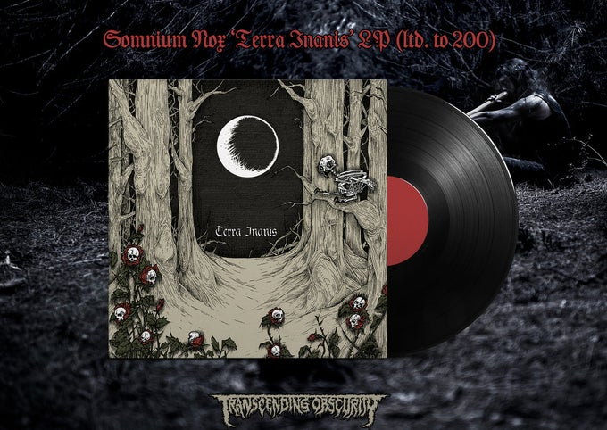 "Image of Terra Inanis Limited edition 12"" vinyl"