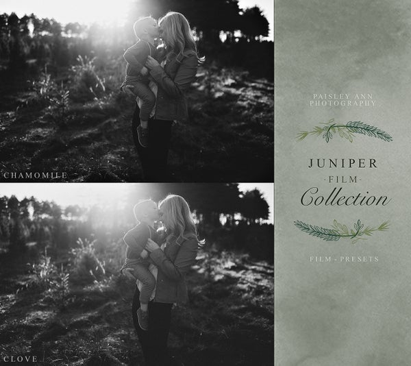 Image of LIGHTROOM Presets - Paisley Ann Photography - [JUNIPER BLACK & WHITE FILM COLLECTION]