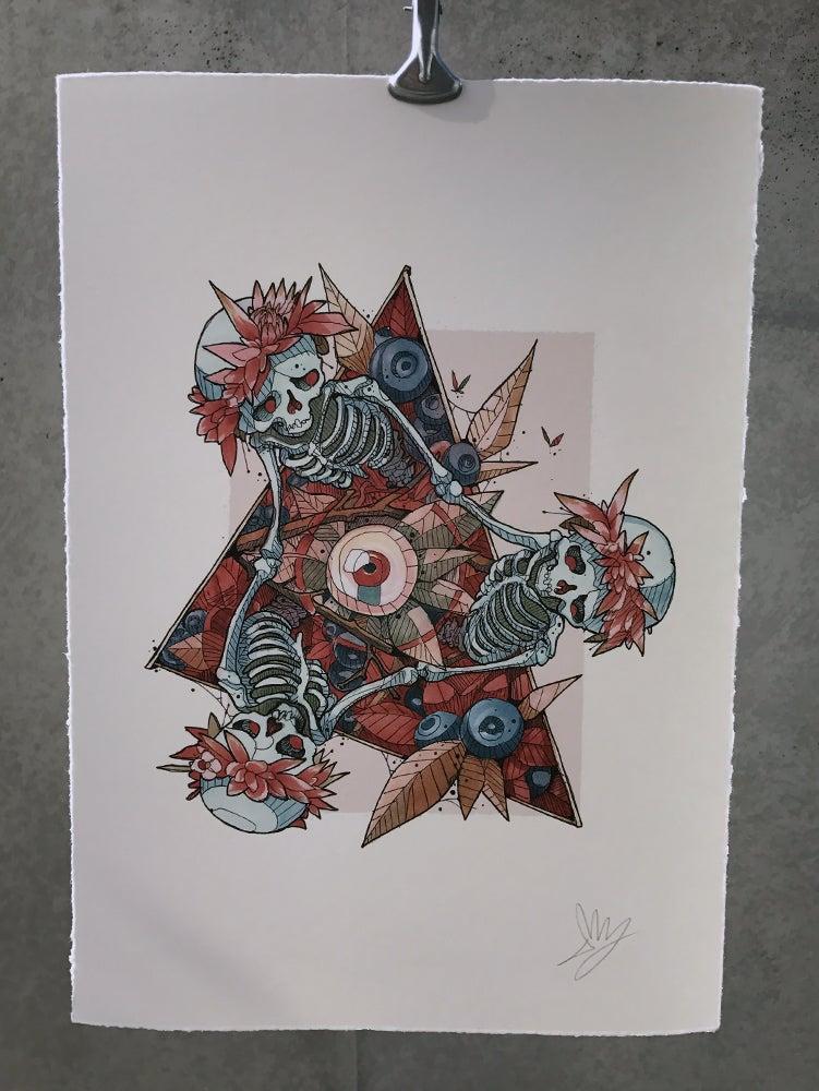 Image of Illuminati & Blueberries - A4