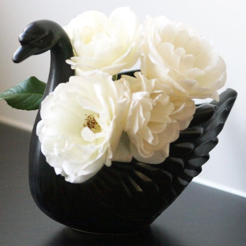 Image of Odette Swan Vase ~ Five Colours