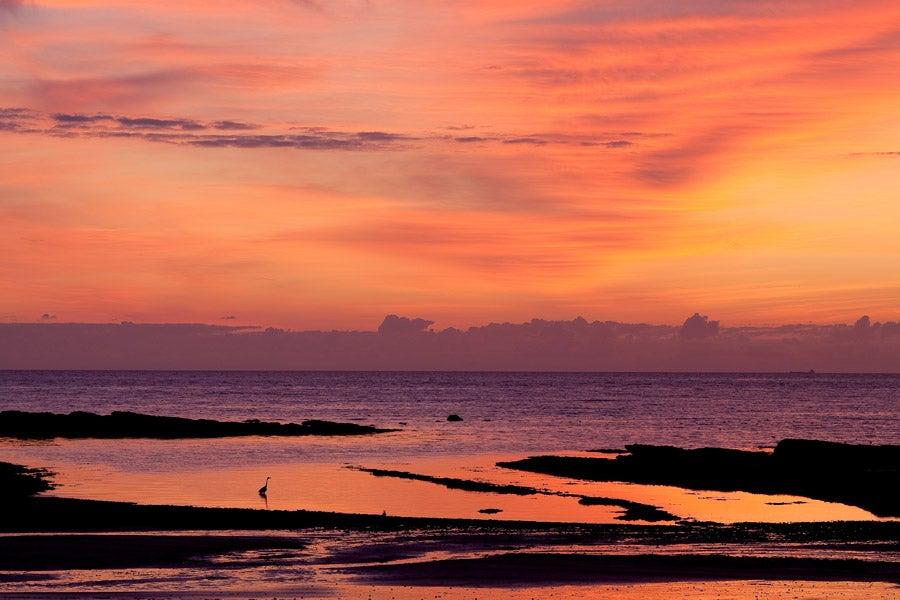 Image of Dawn #2