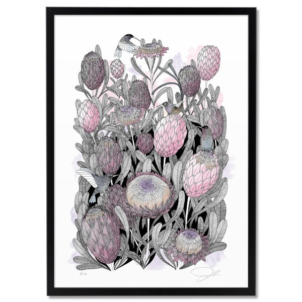 Image of Large Print: Proteas & Hummingbirds color