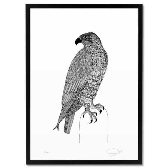 Image of Print: Falcon II