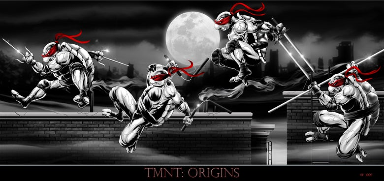 Image of TMNT ORIGINS