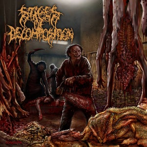 Image of Stages of Decomposition - Piles of Rotting Flesh CD
