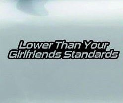 Image of Lower than your girlfriends standards, sticker, plain.