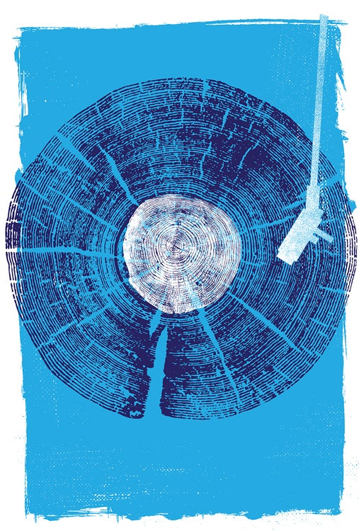 Image of Nature Sounds - Vinyl Record Wood Texture Screenprint - New!