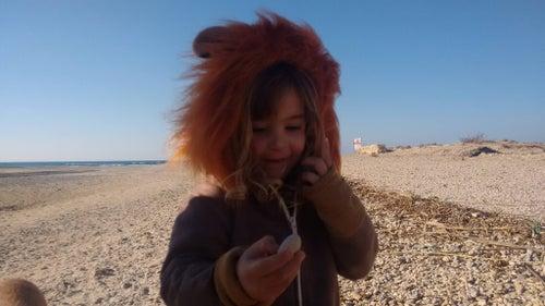 Image of Lion Hoodie קפוצ'ון אריה