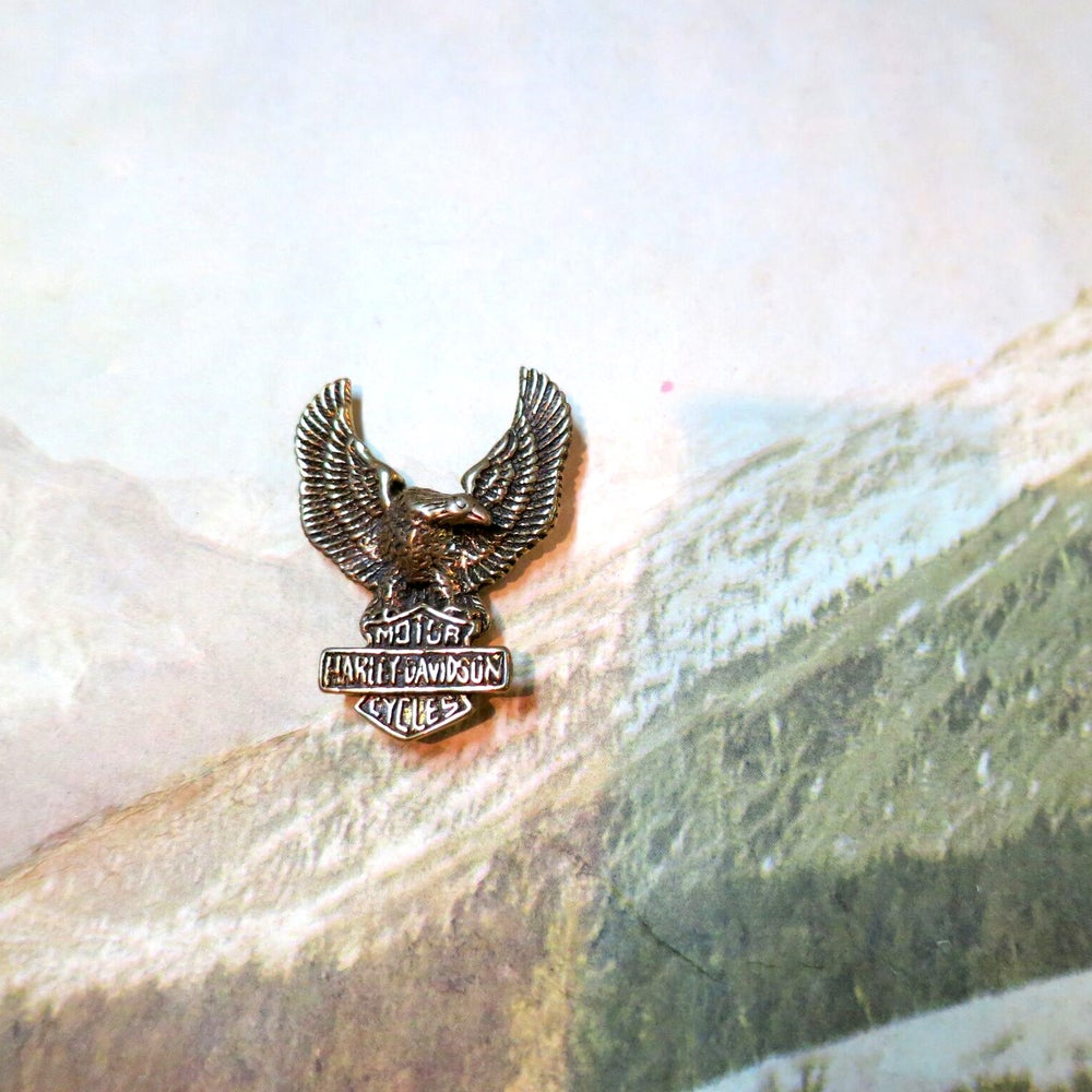 Image of Solid Brass HARLEY DAVIDSON Eagle Pin