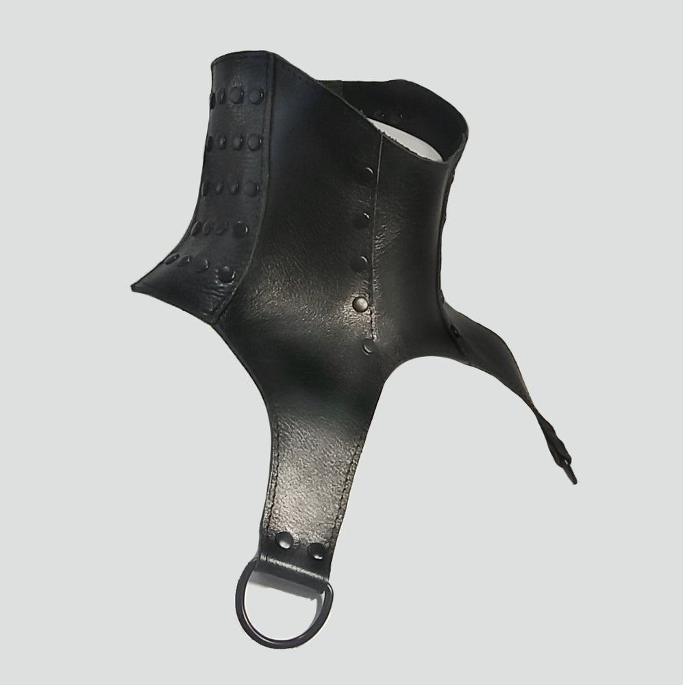 Image of LURSA posture collar