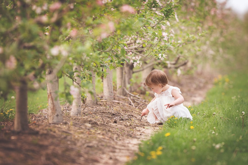 Image of Spring Mini Sessions at Quarry Hill