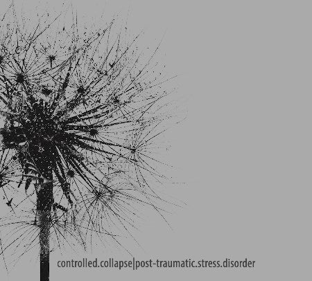 Image of Post-traumatic.Stress.Disorder