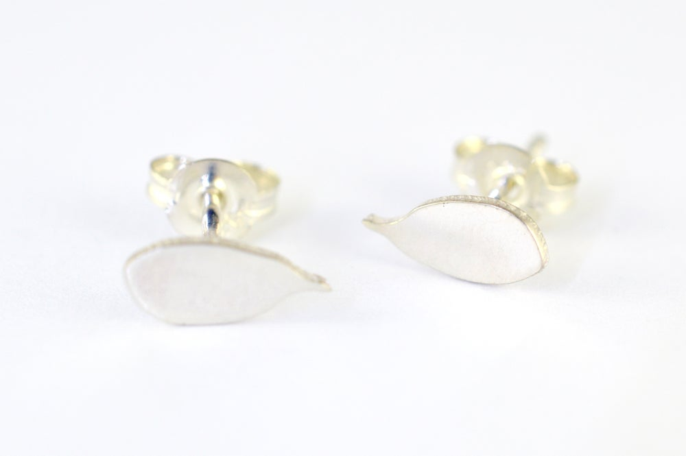 Image of Yellow mangrove studs