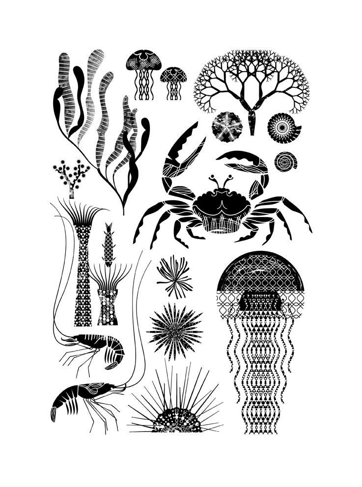 Image of Dans la mer